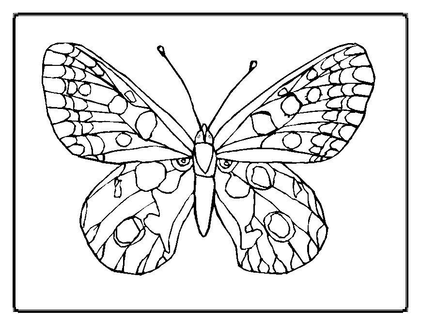 Butterflies Printables AZ Coloring