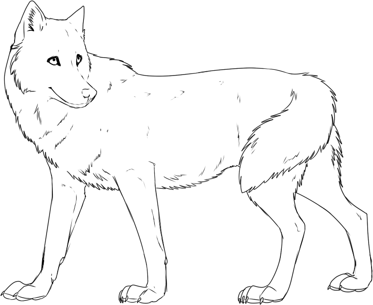 Wolf Coloring Page For Kids - Coloring Home