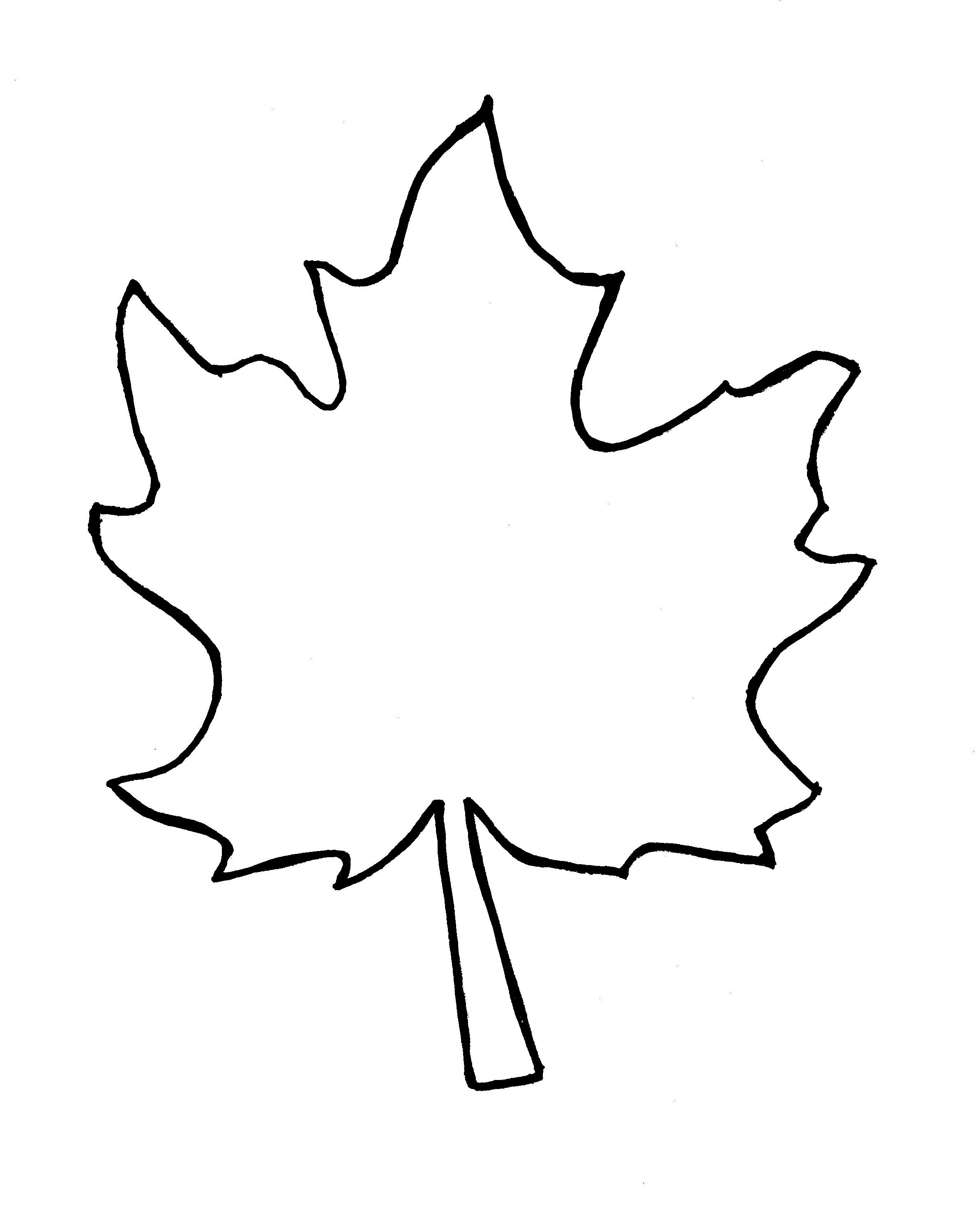 Jungle Leaf Template Cliparts Coloring Home