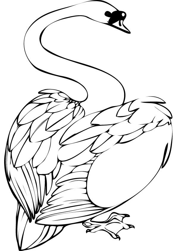 swan coloring pages to print - photo#28