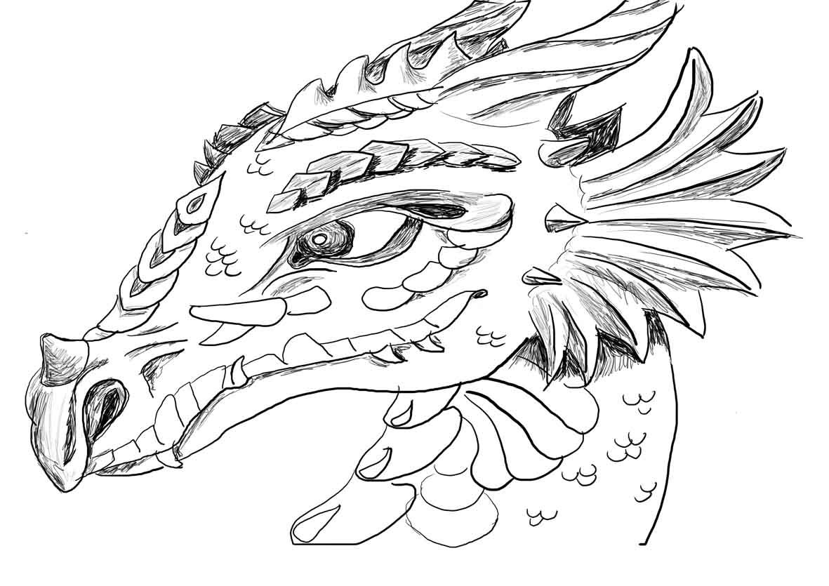Dragon coloring printouts - Adult Coloring Pictures Of Dragons Dragon Coloring Pages For Adults 18 Pictures Colorine Net 10875