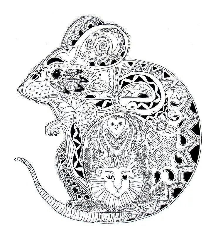 Detailed animal coloring pages for adults coloring home for Coloring pages detailed