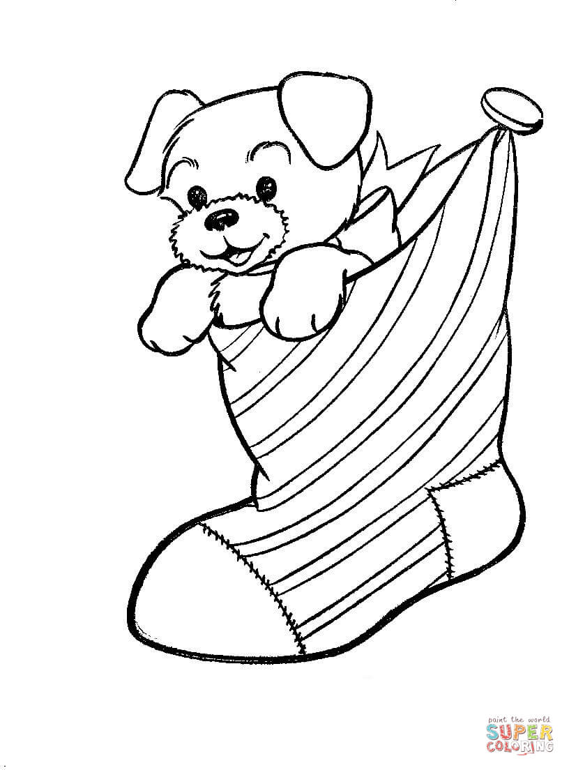 A Puppy Dog In A Christmas Stocking coloring page | Free Printable Coloring  Pages
