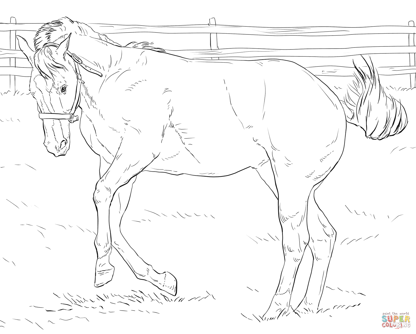 Broncos Printable Coloring Pages