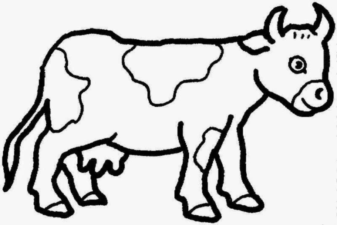 Cow Coloring Pages - Coloring Home