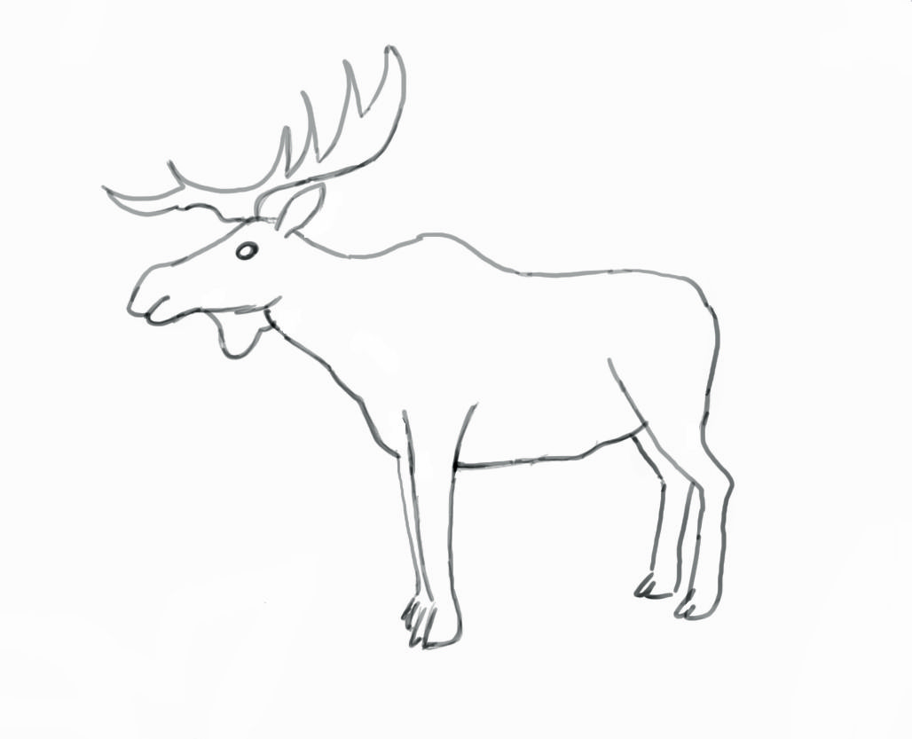 moose head drawing coloring home