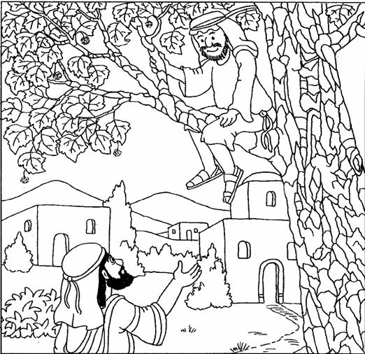 The Best Zacchaeus Coloring Sheet Leslie Website