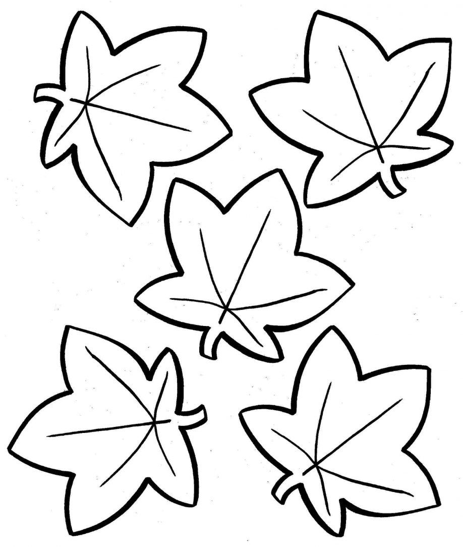 19 Free Pictures for: Fall Leaf Coloring Pages. Temoon.us