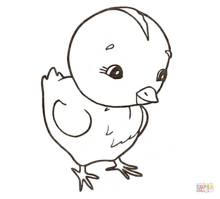 Chicken Coloring Pages Free Coloring Pages Coloring Home