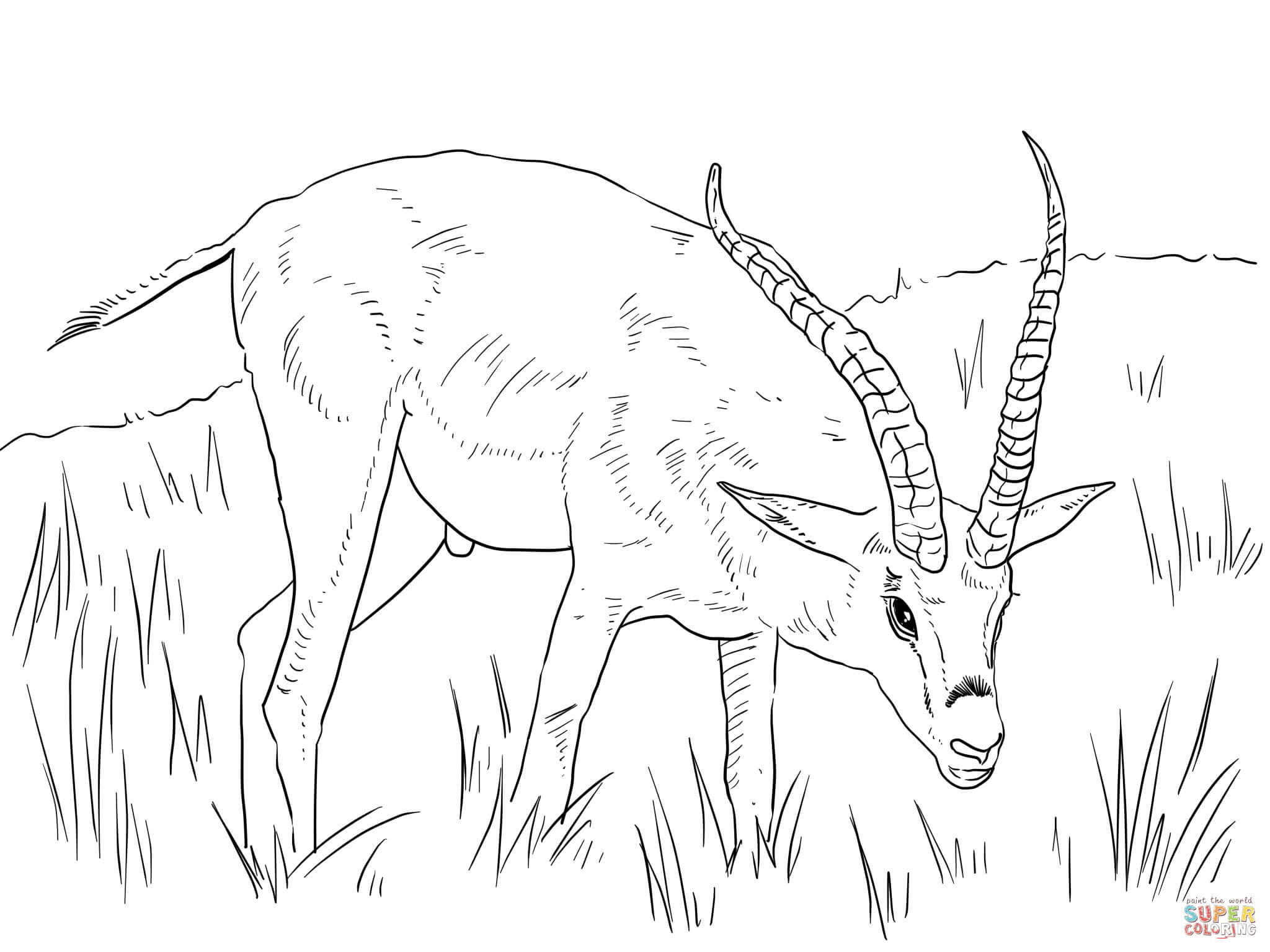 African Animals Coloring Pages | Free Printable Pictures - Coloring Home
