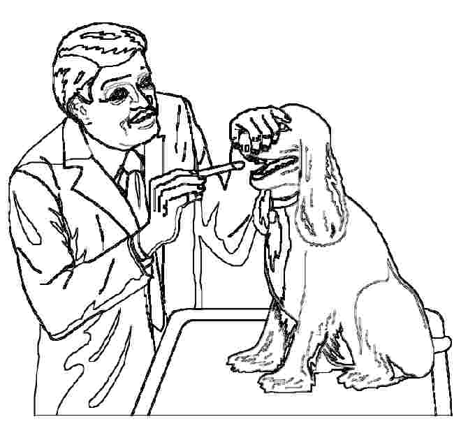 Veterinarian Hospitals Of Coloring Pages Click To