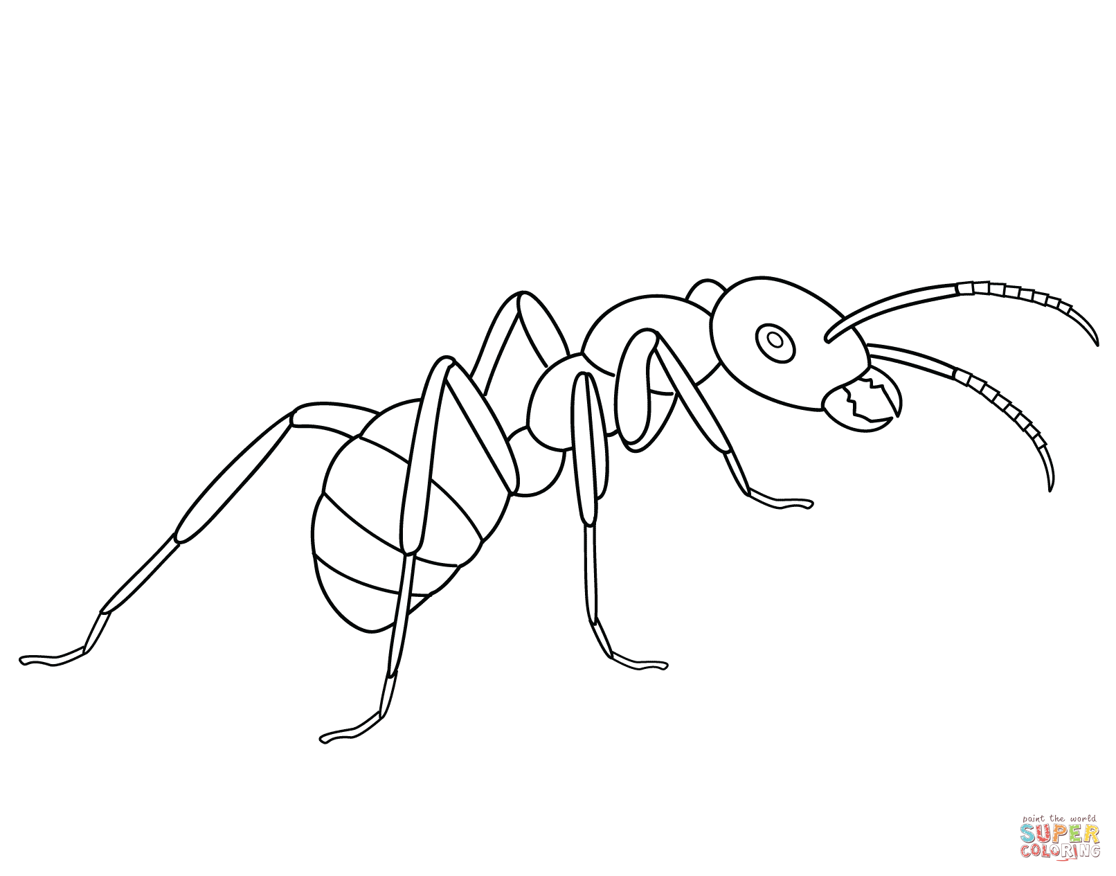 Free Printable Ant Coloring Pages Coloring Home Coloring Pages Ant