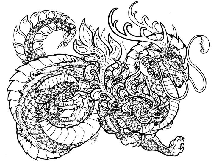 Dragon Coloring Pages For Adults Printable : Detailed Dragon Coloring Pages Coloring Home