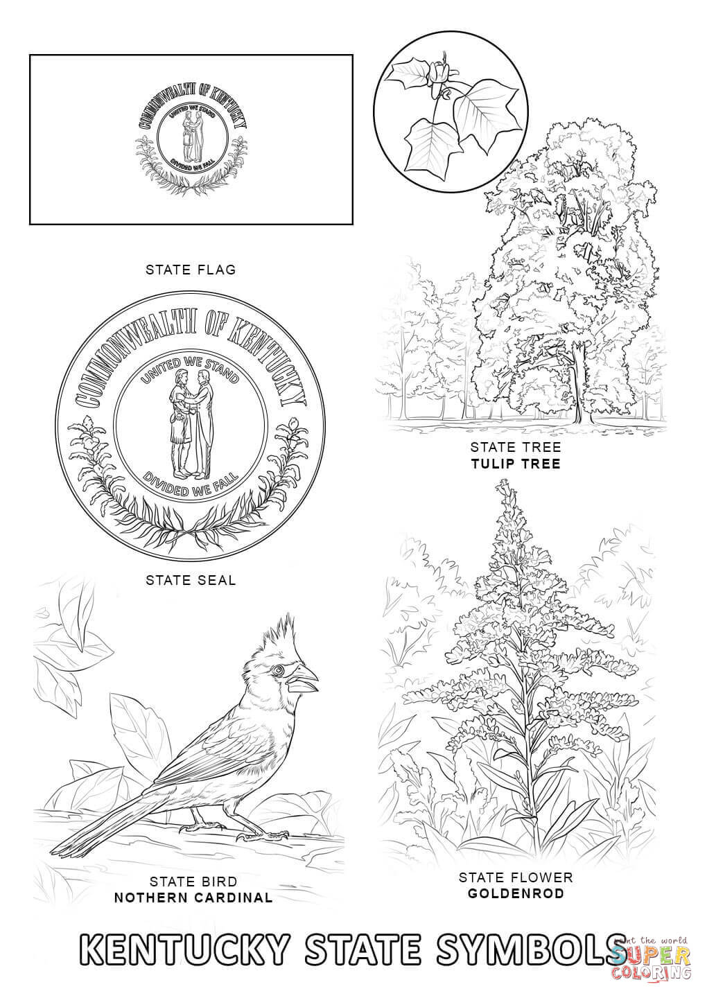 Kentucky State Flag Coloring Page Coloring Home