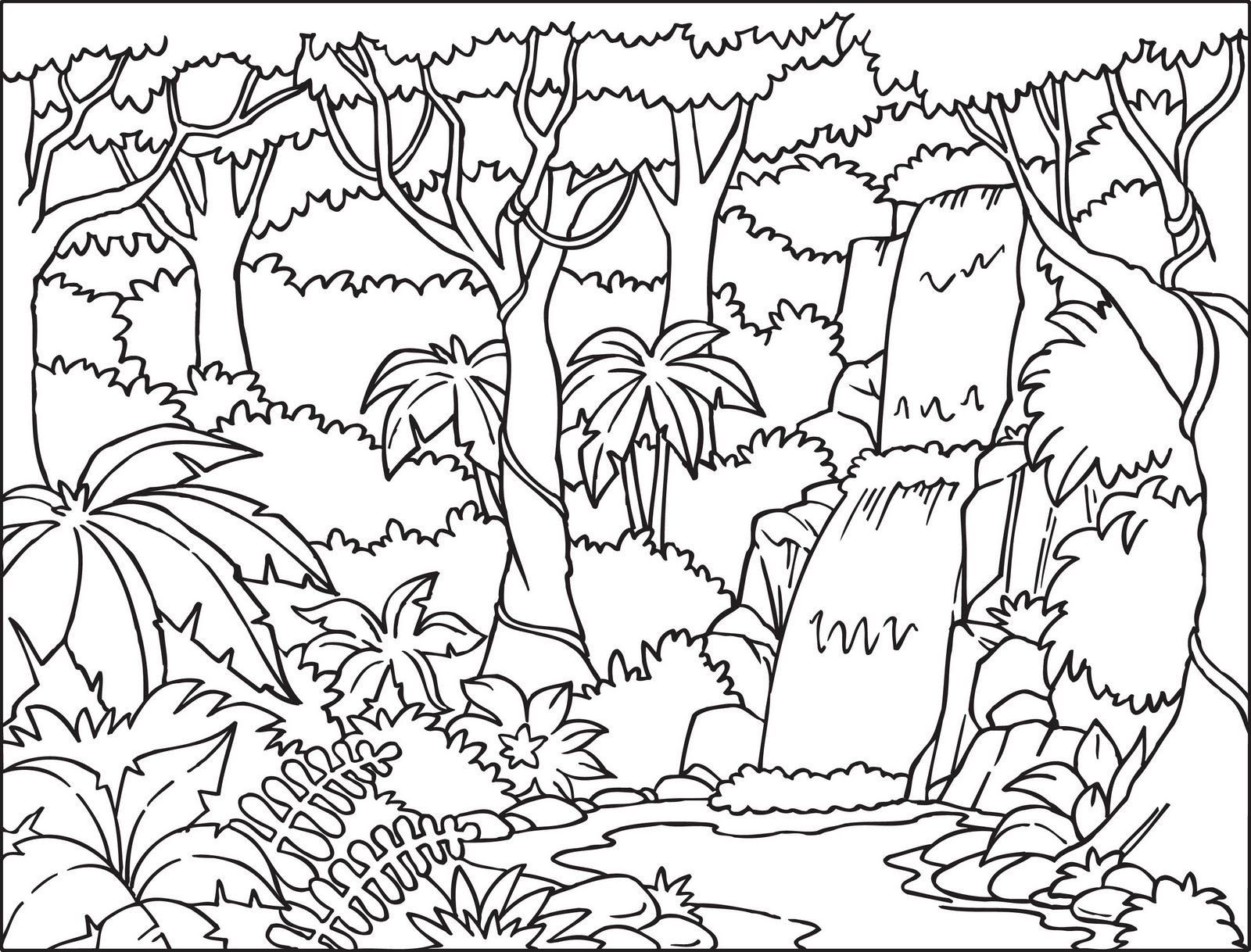 Layers of rainforest coloring page coloring pages