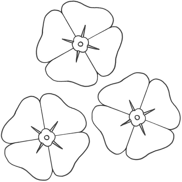 Remembrance Day Poppy Coloring Page Az Coloring Pages Poppy Colouring Pages