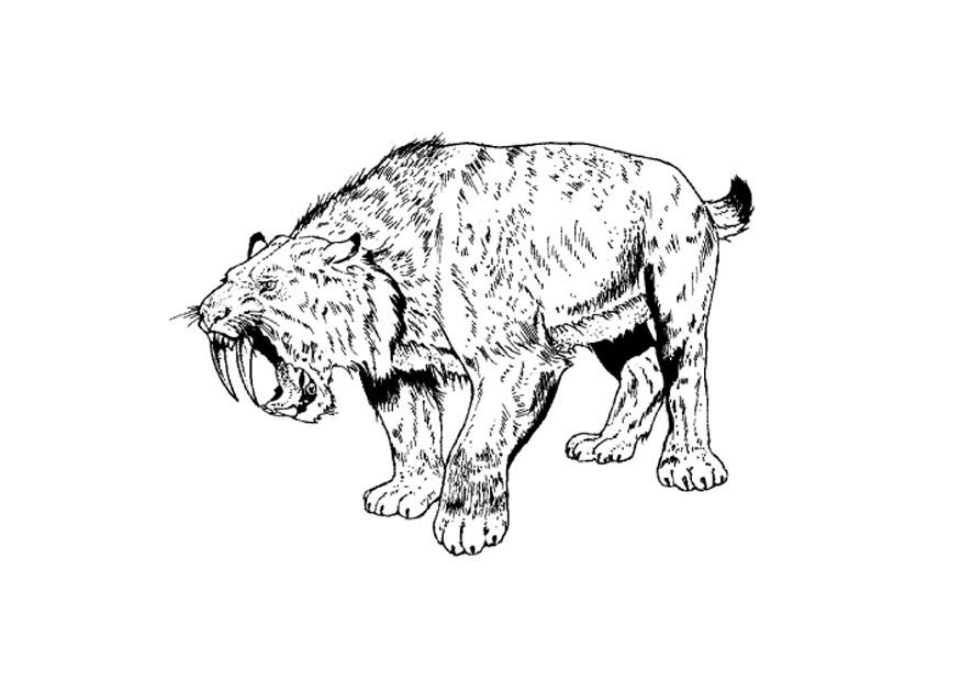 saber tooth coloring pages | Saber Tooth Tiger Coloring Page - Coloring Home