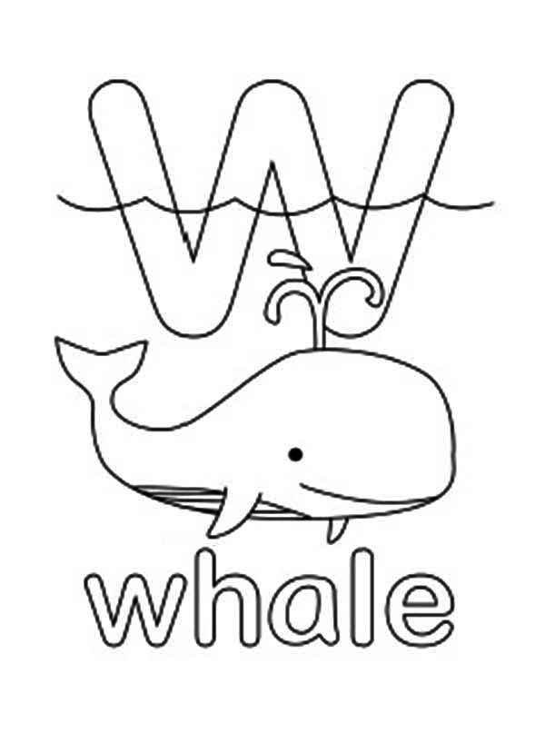 w is for whale coloring page coloring home