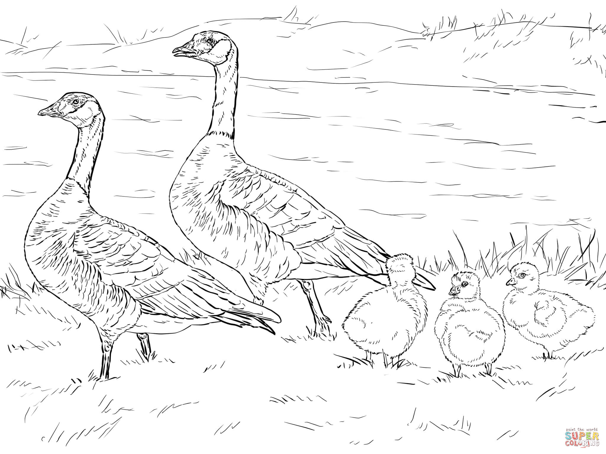 geese coloring pages for kids - photo#24