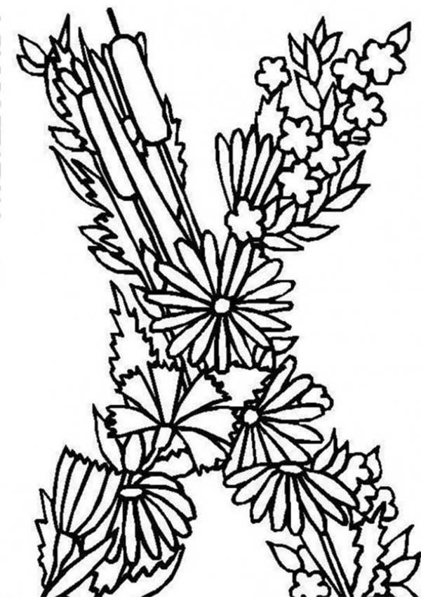 Letter X Coloring Pages Coloring