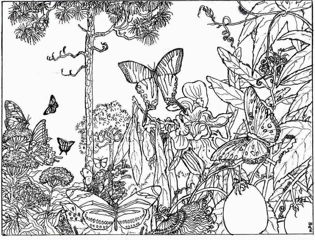 Printable coloring pages landscapes - 7 Best Images Of Nature Printable Coloring Pages For Adults Free