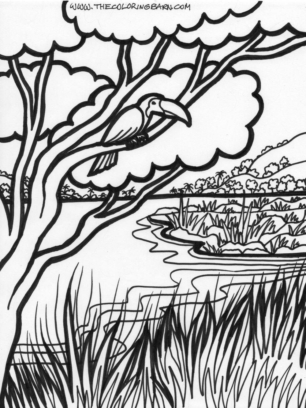 rain forest trees coloring page coloring home
