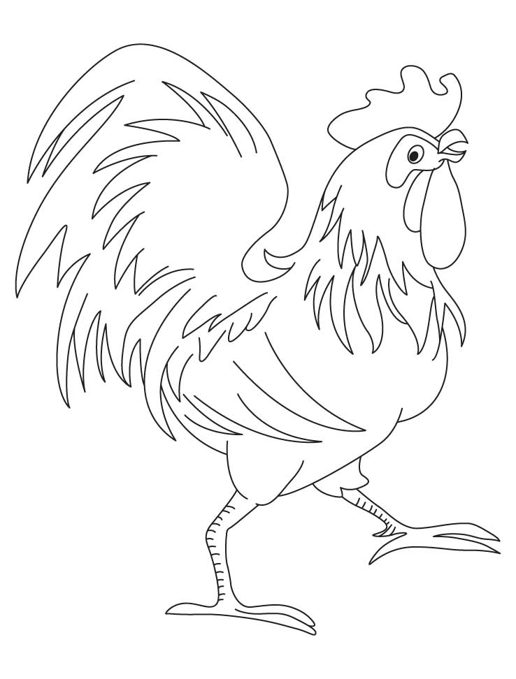 Chinese Rooster Page Coloring Pages