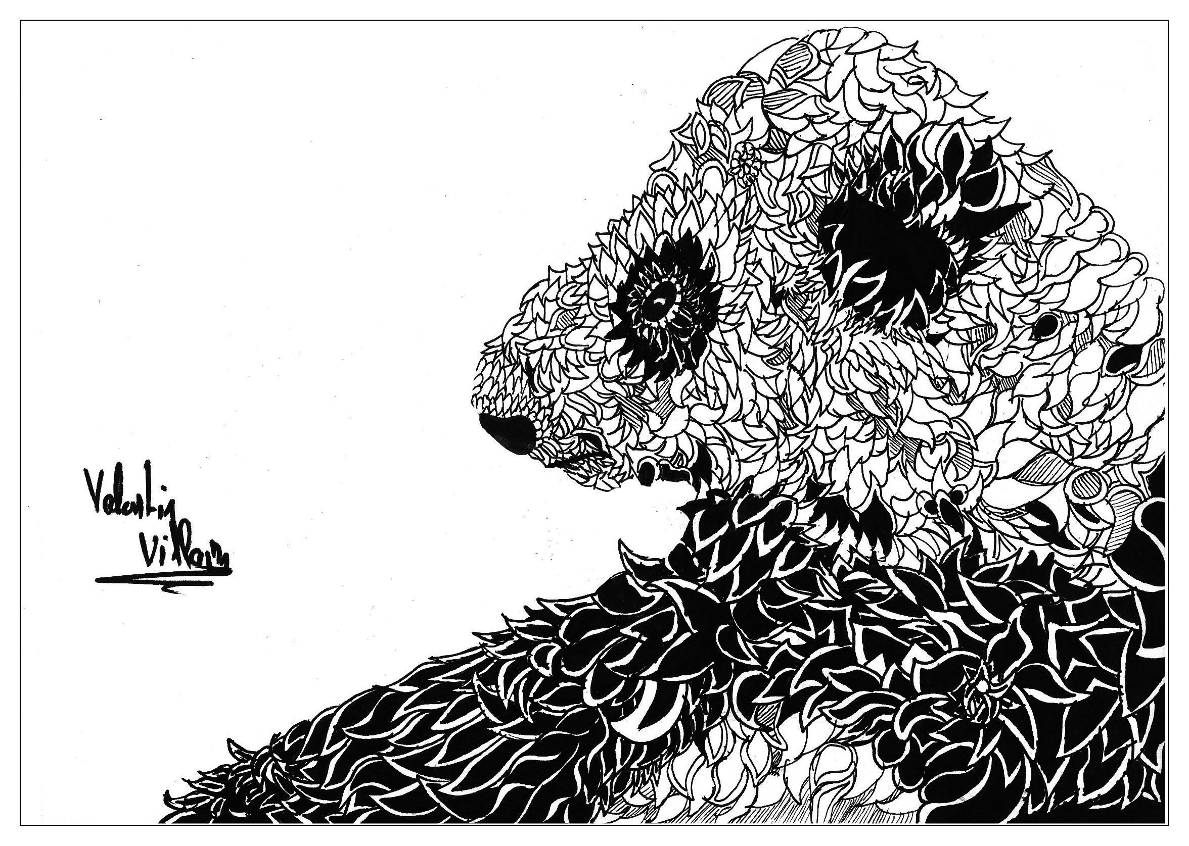 Ausmalbilder Zootiere: Detailed Animal Coloring Pages For Adults