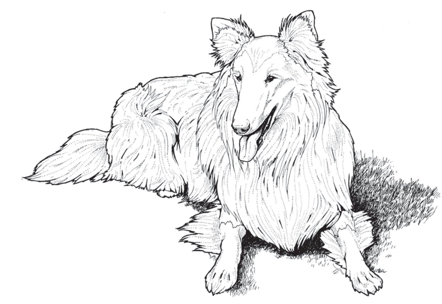 coloring pages of puppies hard - photo#31