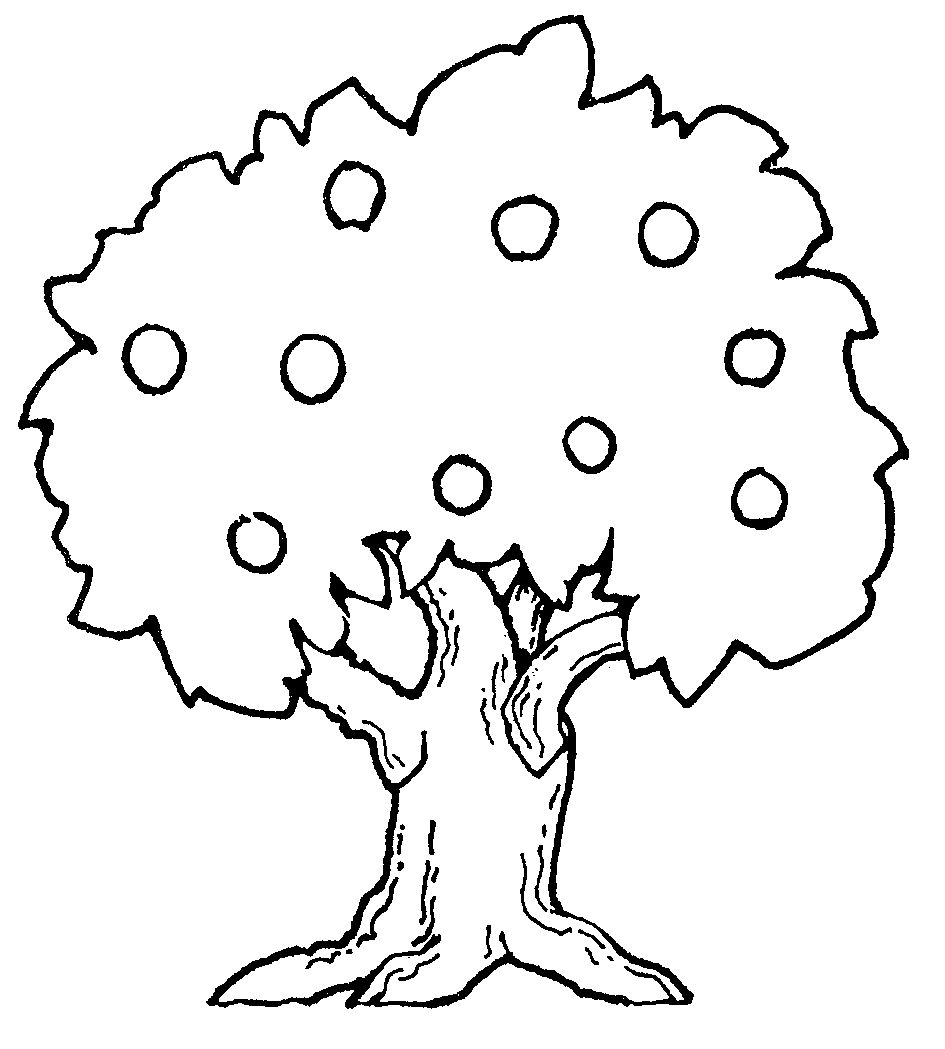 tree-to-color | Free Coloring Pages on Masivy World
