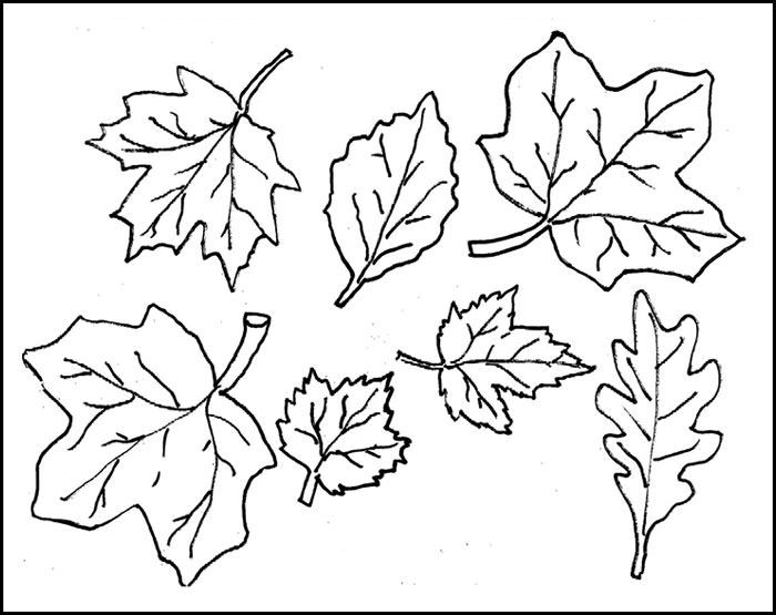 photo regarding Leaf Cutout Printable titled Leaf Template Printable Leaf Templates No cost Quality
