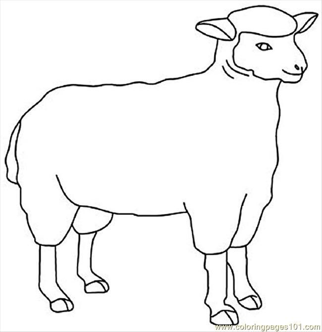 Sheep sheet coloring pages for Lamb template to print