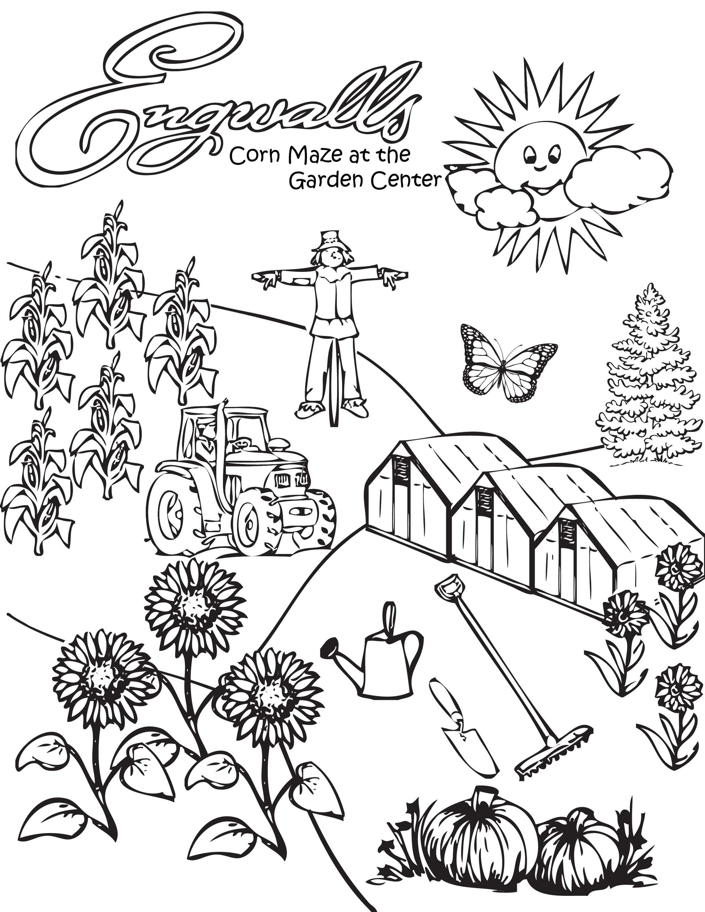 Corn Stalk Coloring Page Coloring