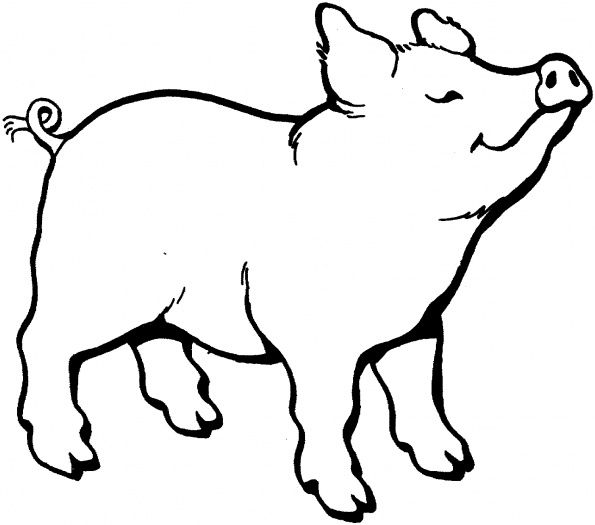 Charlotte\'s Web Coloring Page - Coloring Home