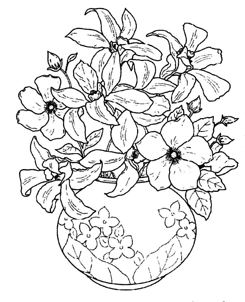 Beautiful Flower Vase Coloring Pages Sketch Coloring Page