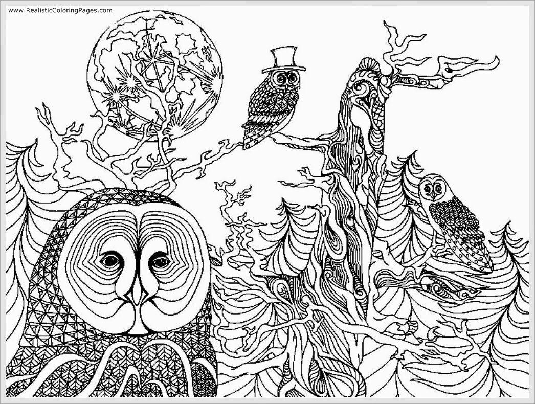 realistic owl coloring pages - free owl adult coloring pages to print coloring home