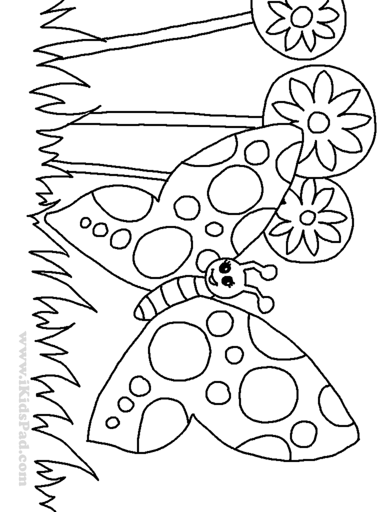 Butterfly Gareden Free Coloring