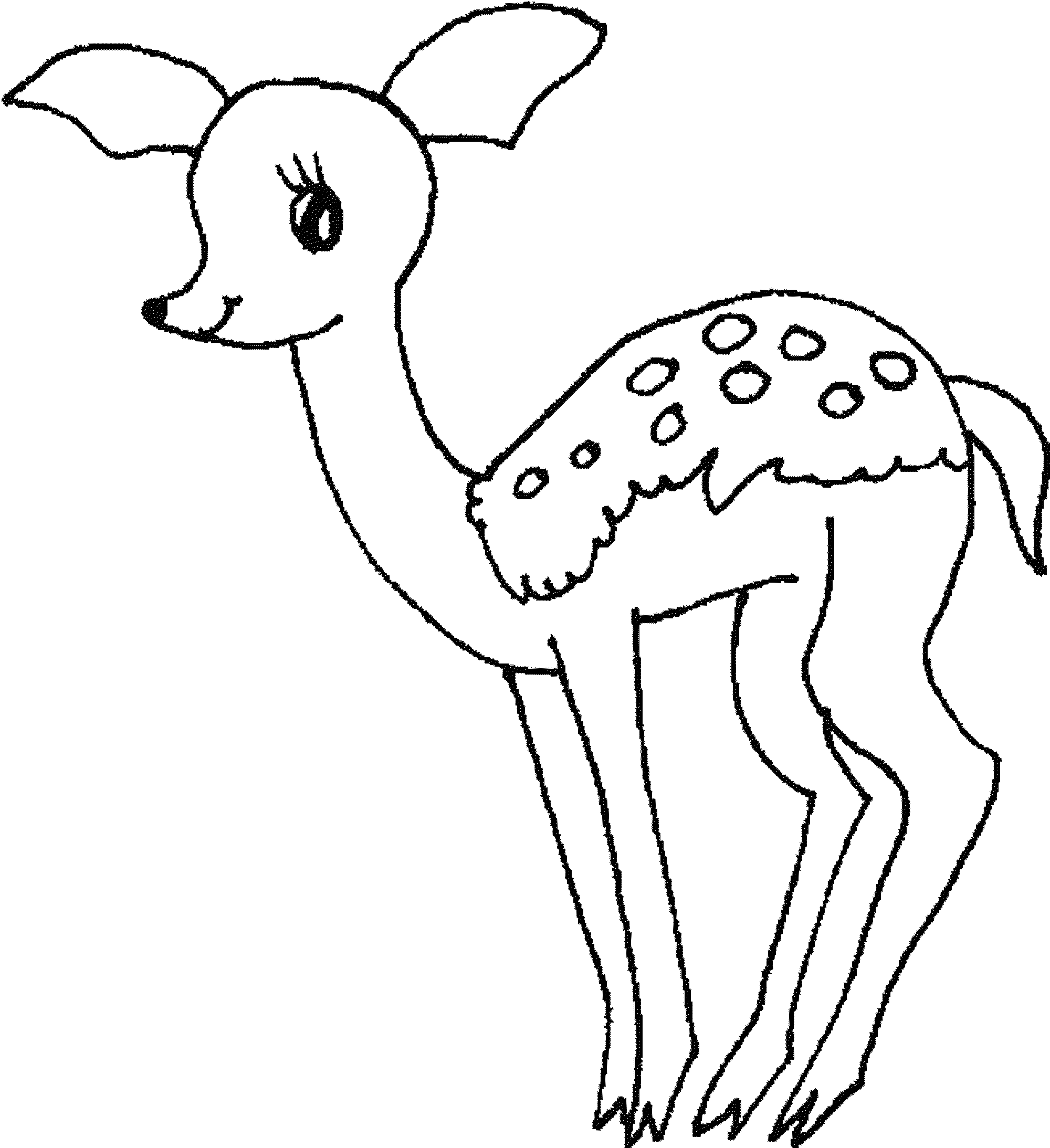 baby deer coloring pages - photo#6