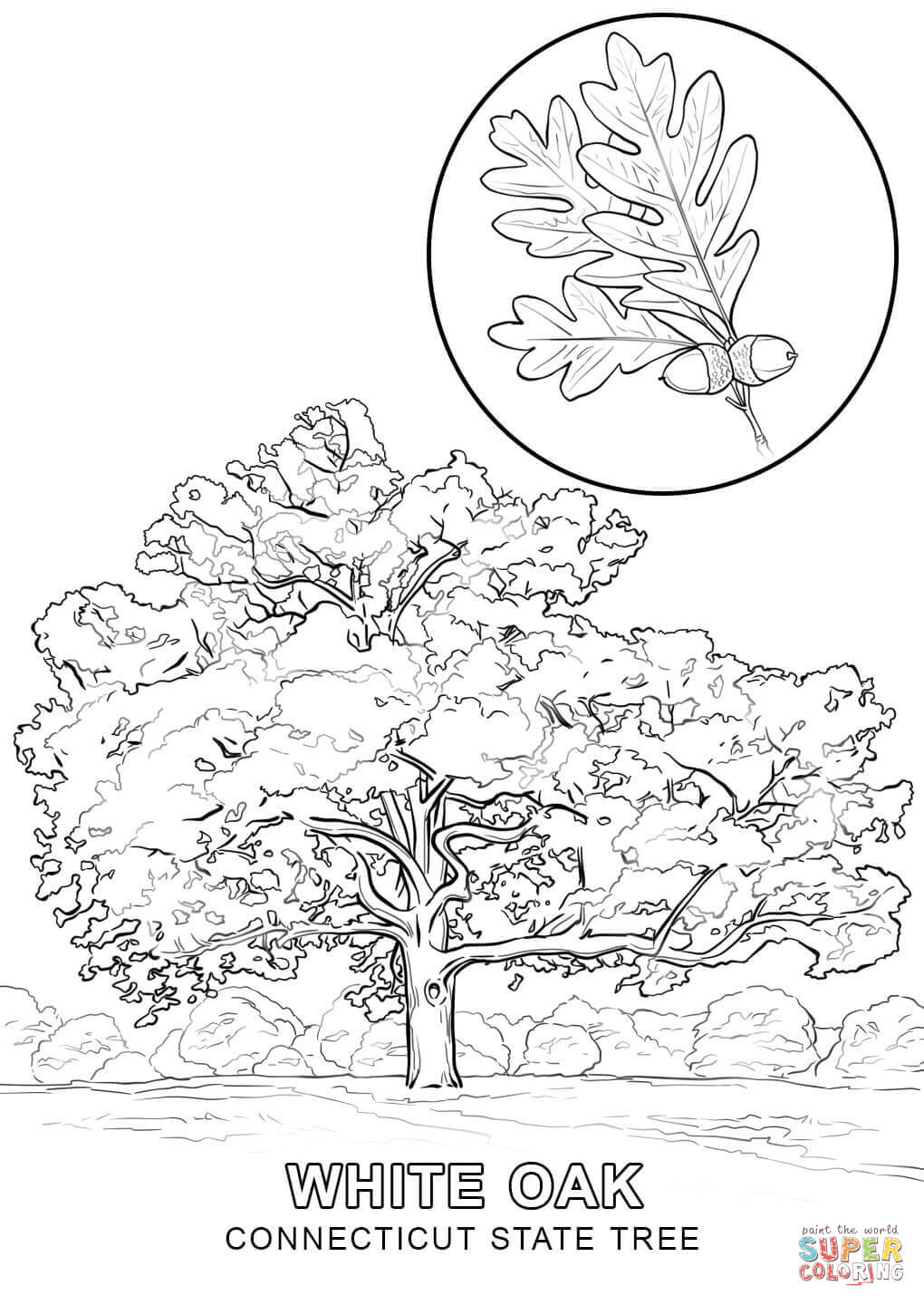 Flag of Louisiana coloring page | Free Printable Coloring Pages | 1440x1020