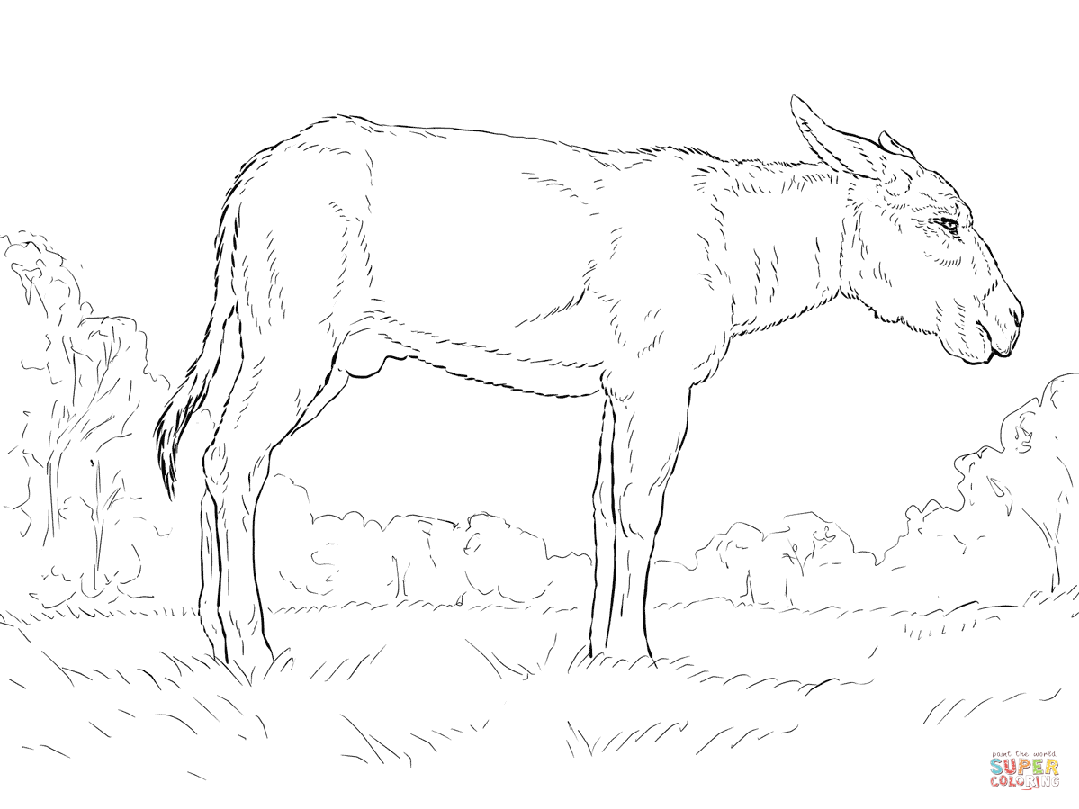 Donkey Coloring Page Free Printable Coloring Pages Coloring Home