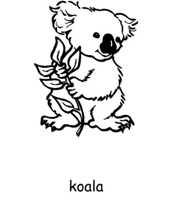 Australia pictures for kids coloring home for Australia day coloring pages