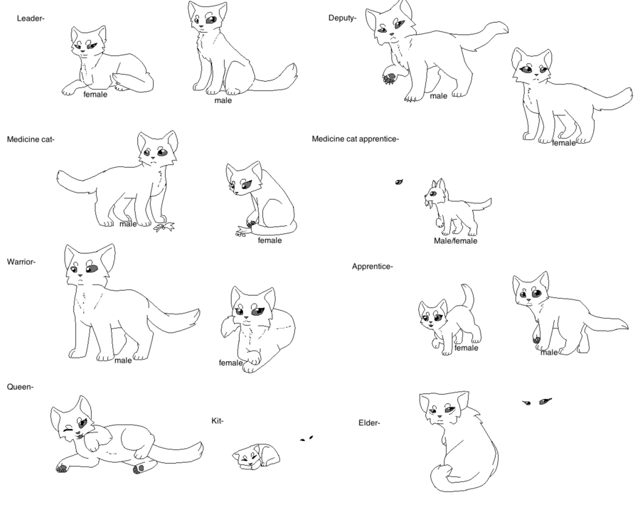 Black Star Warrior Cats Coloring Pages