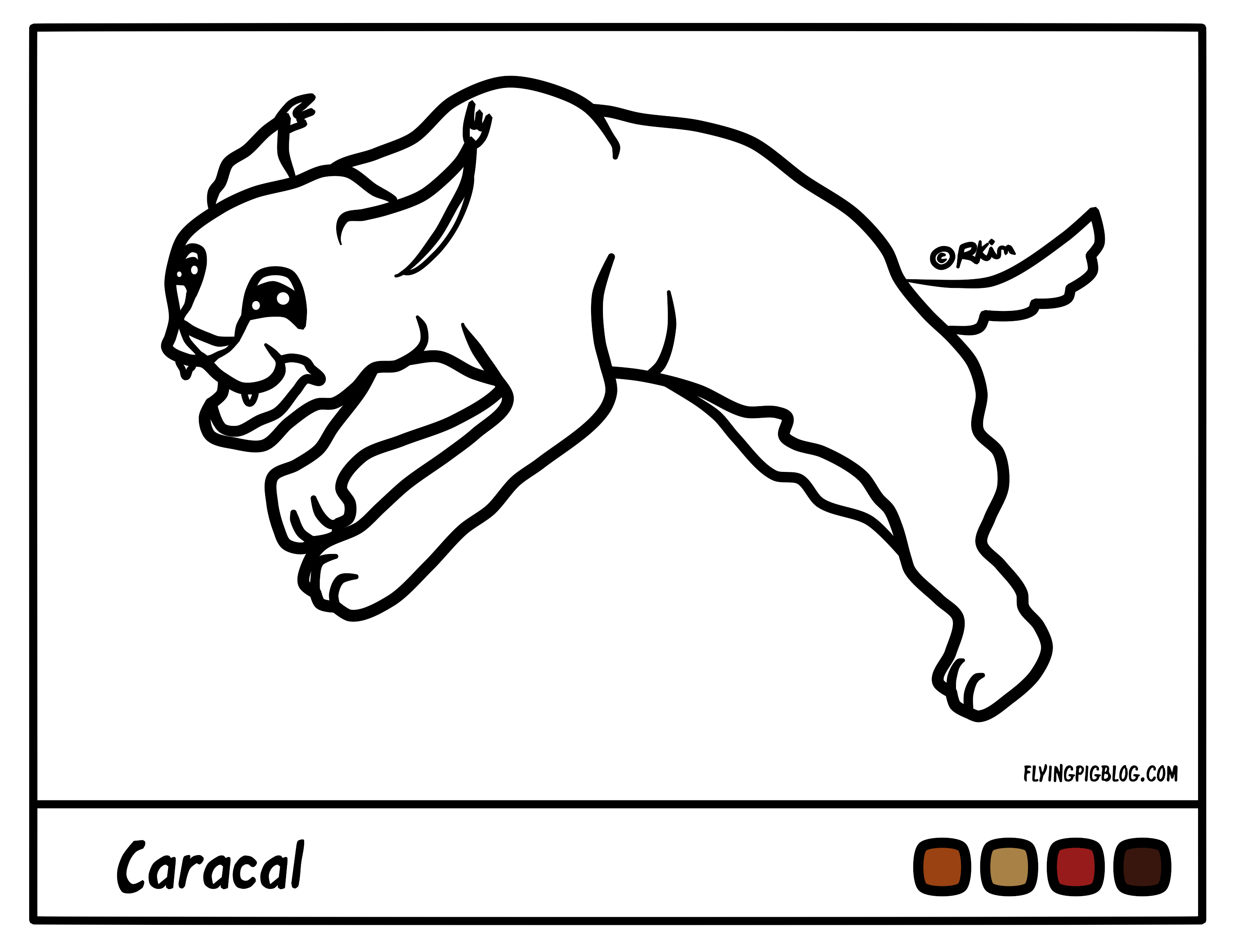 caracal coloring page coloring home Big Cat Coloring Pages  Caracal Coloring Page