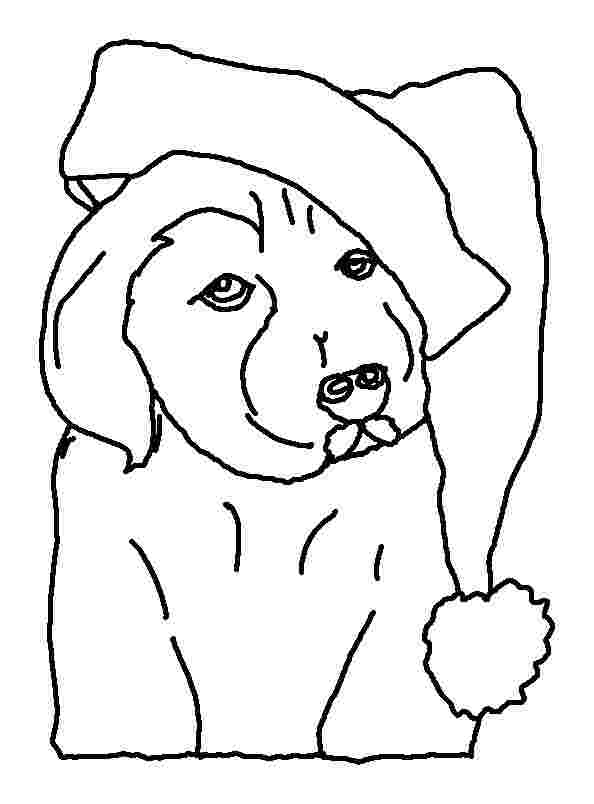 Coloring Pages Puppy Collection - Whitesbelfast
