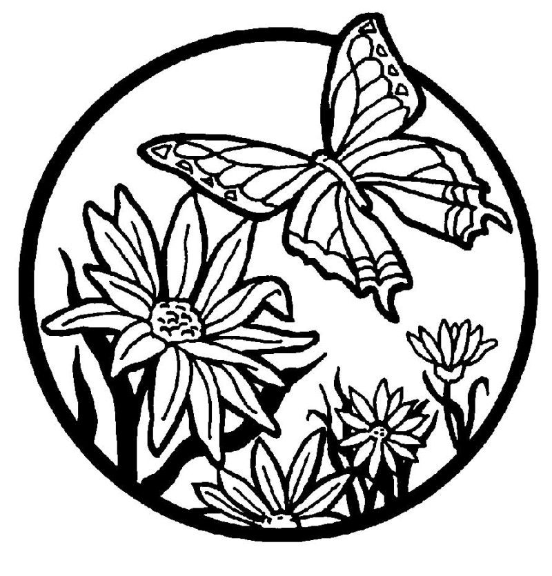 butterfly-with-flowers-coloring-pages: butterfly-with-flowers