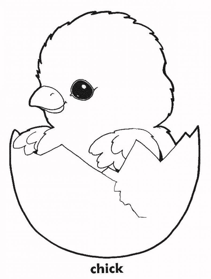 Printable chicken coloring pages coloring home for Chick coloring pages