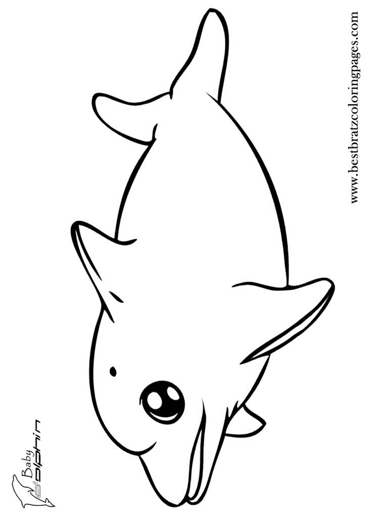 Coloring Pages For Adults Dolphins