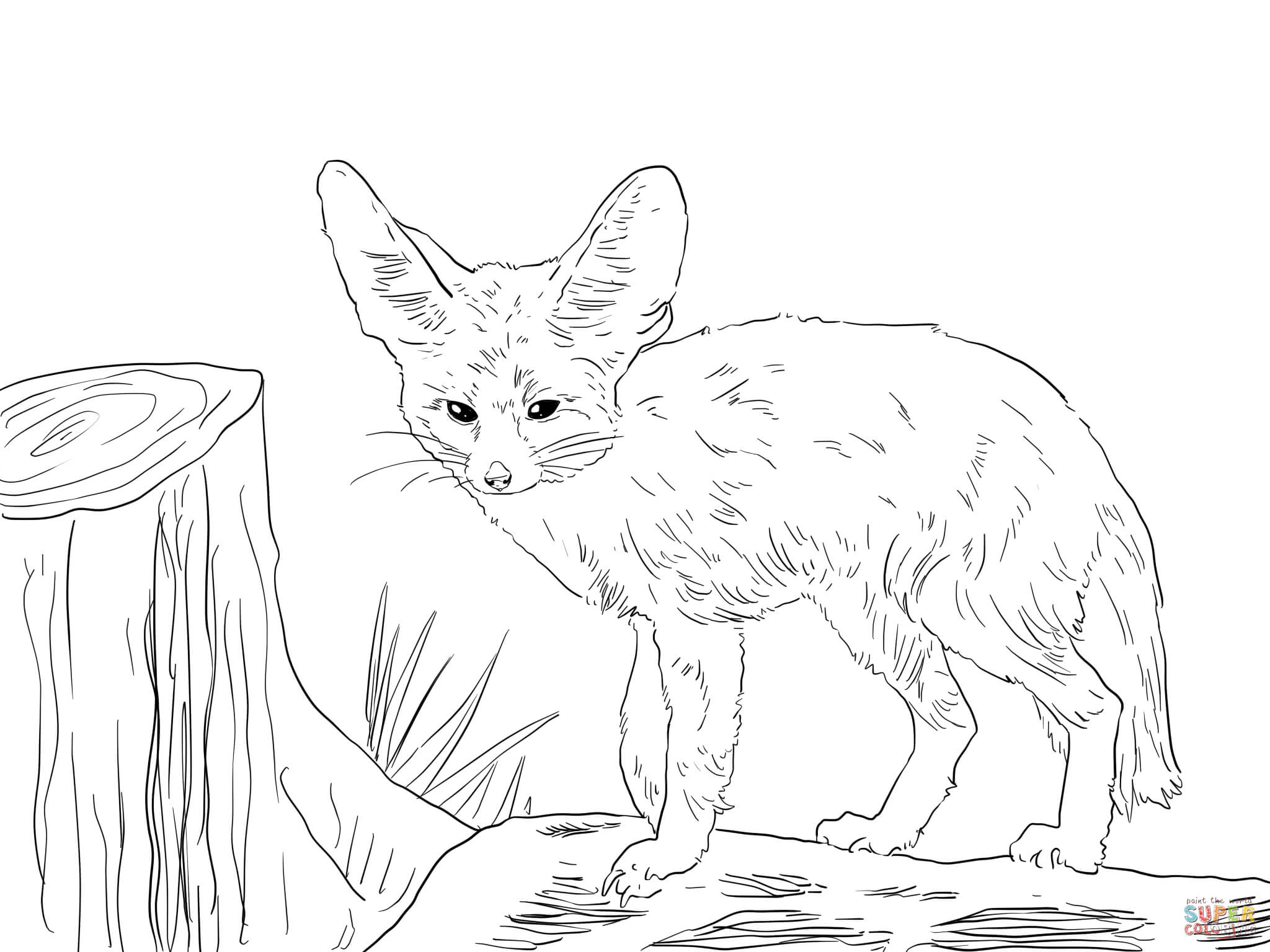 fox coloring page coloring home
