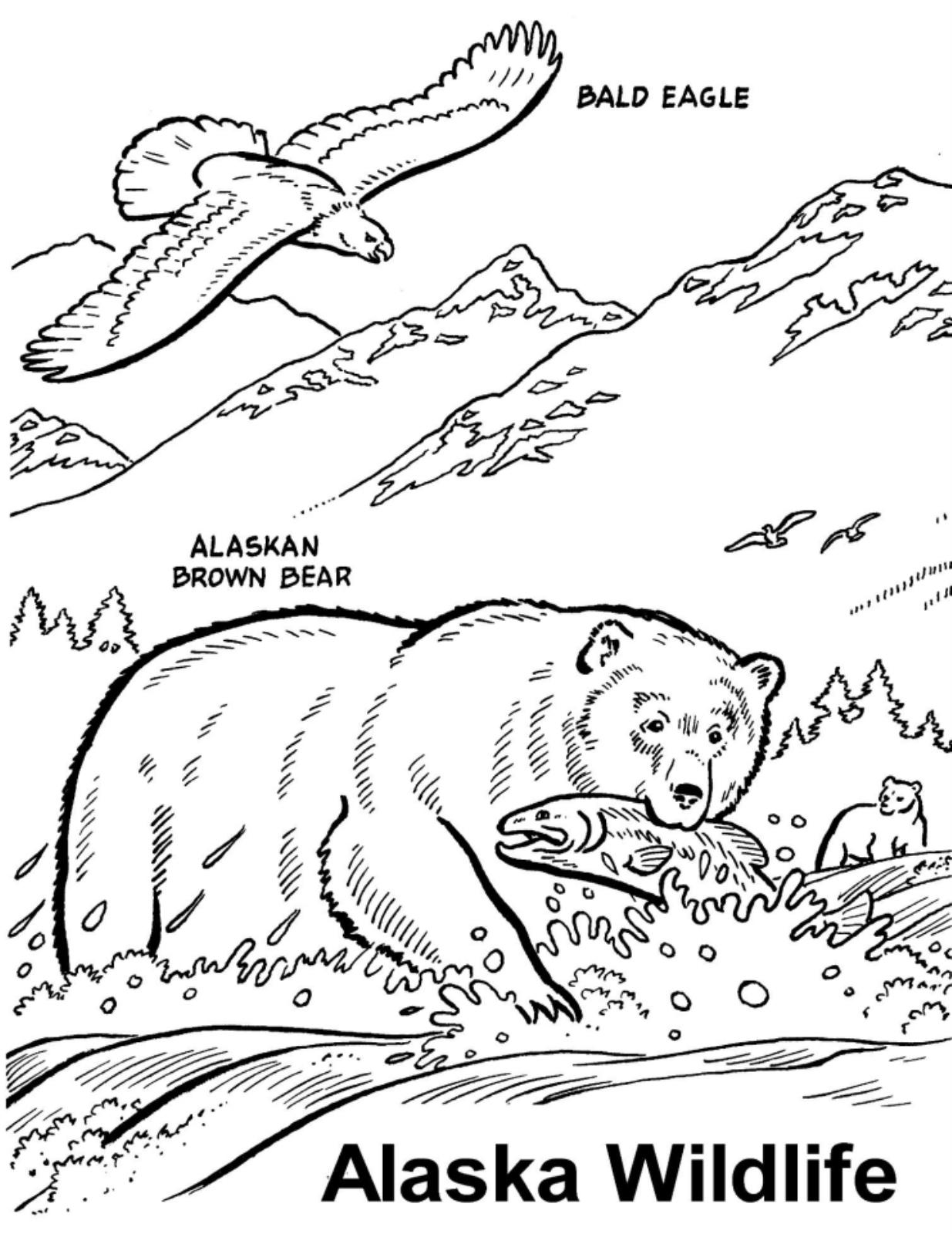coloring pages city wildlife - photo#21