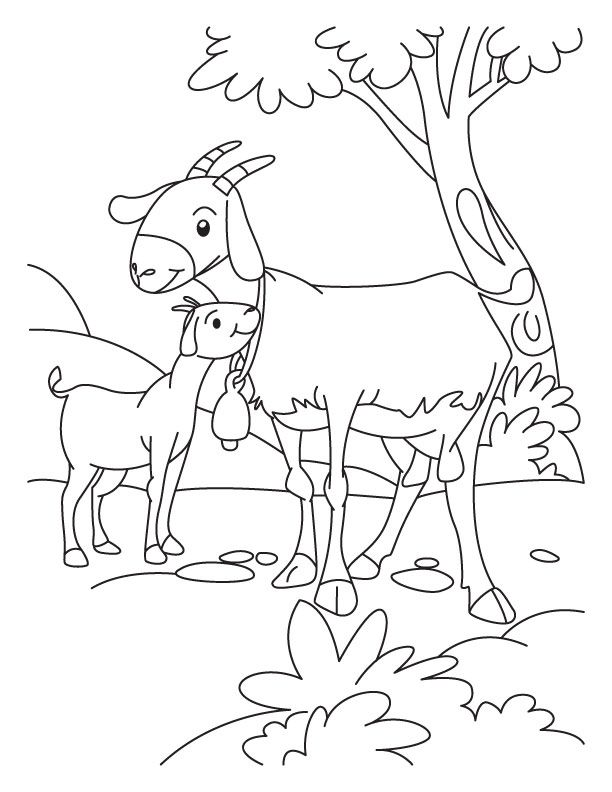 Goat and Kid coloring page | Download Free Goat and Kid coloring